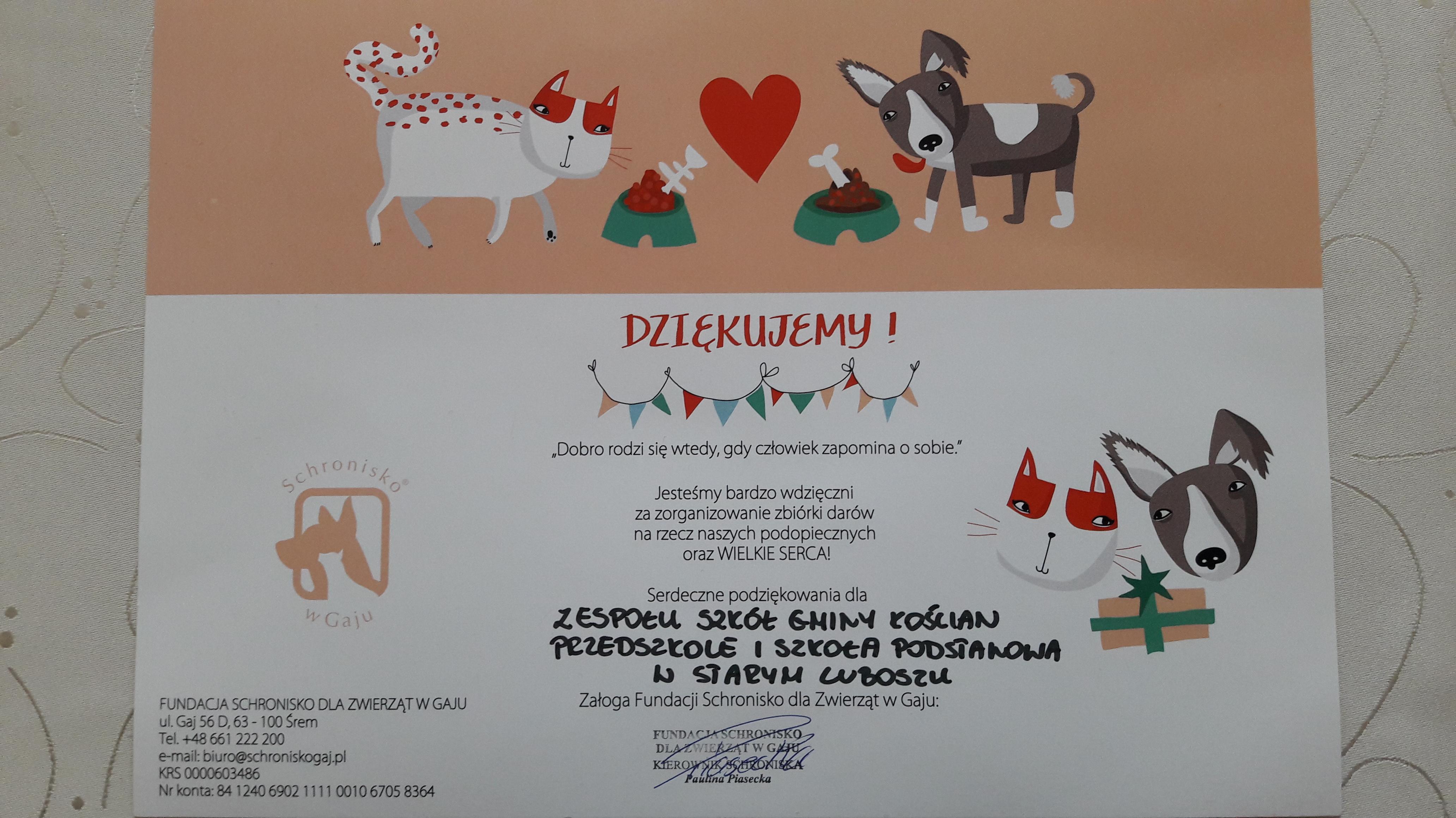 Zbiórka darów dla schroniska w Gaju